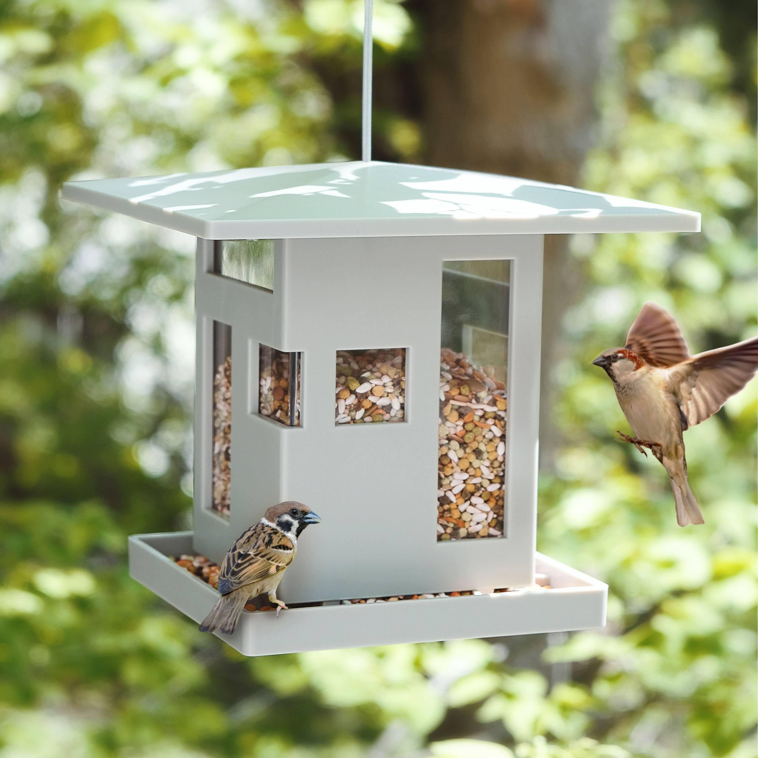 Bird Cafe Futterstelle