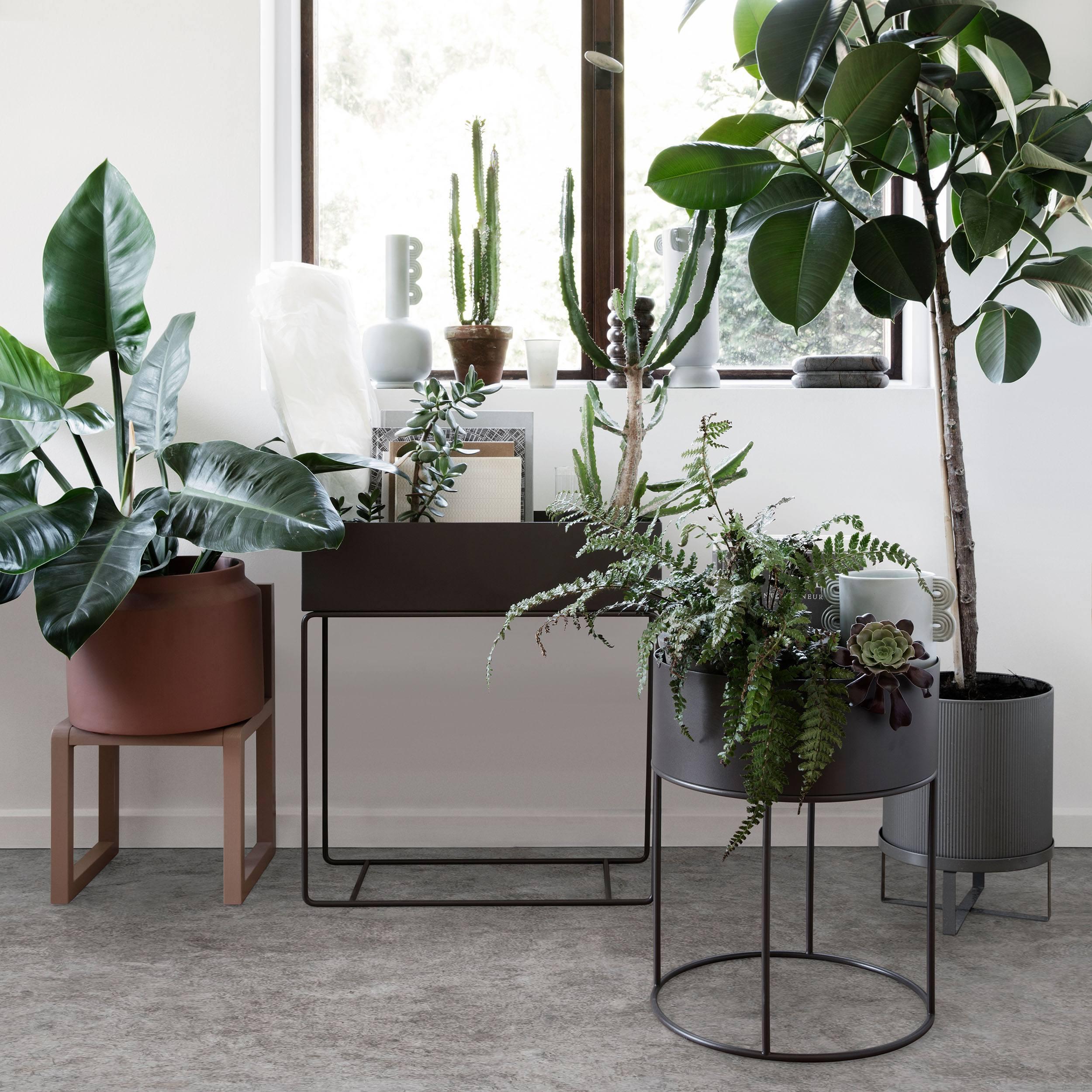 Plant Box large Blumenkasten mit Gestell
