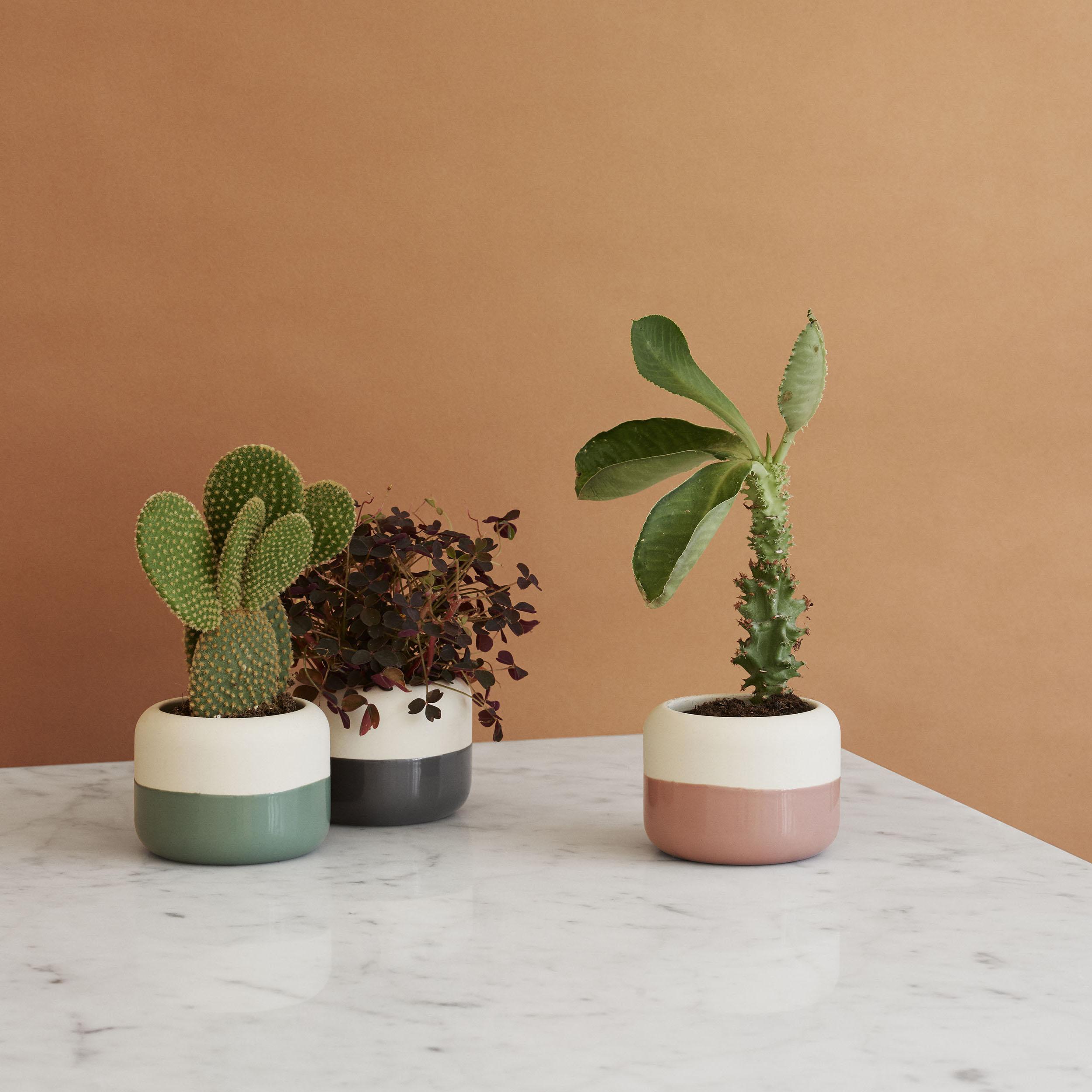 Plant-it Blumentopf