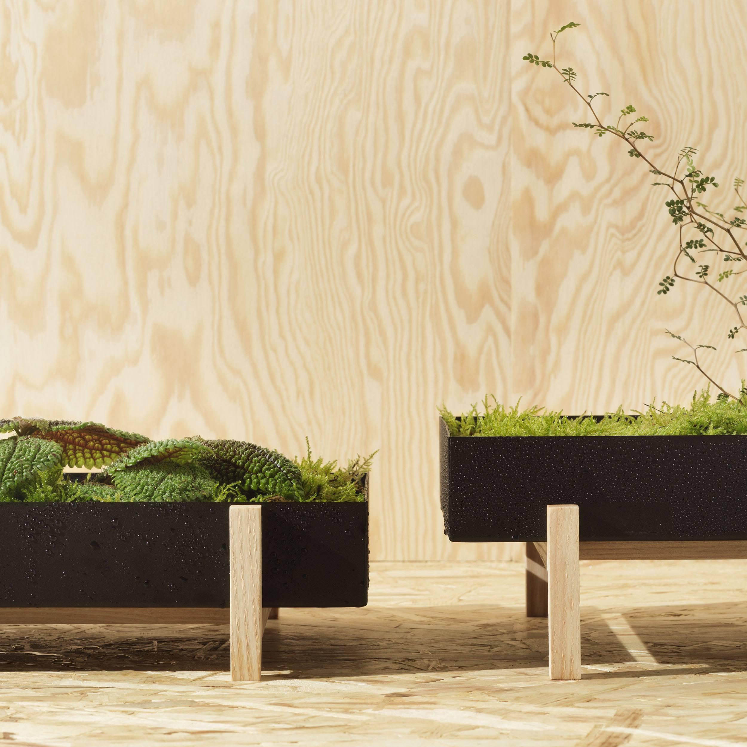 Botanic Tray Blumenkasten