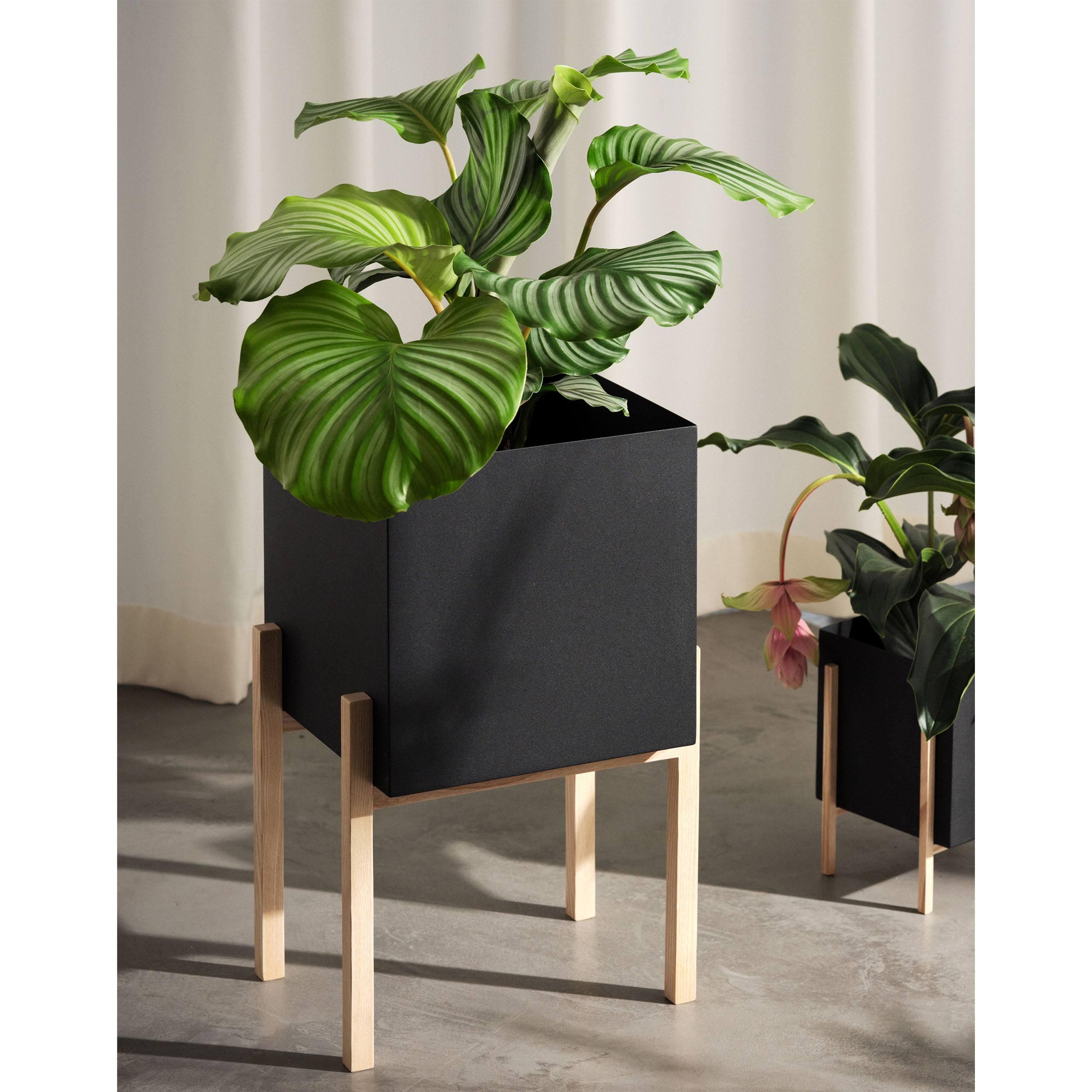 Botanic Pedestal Pot Blumentopf