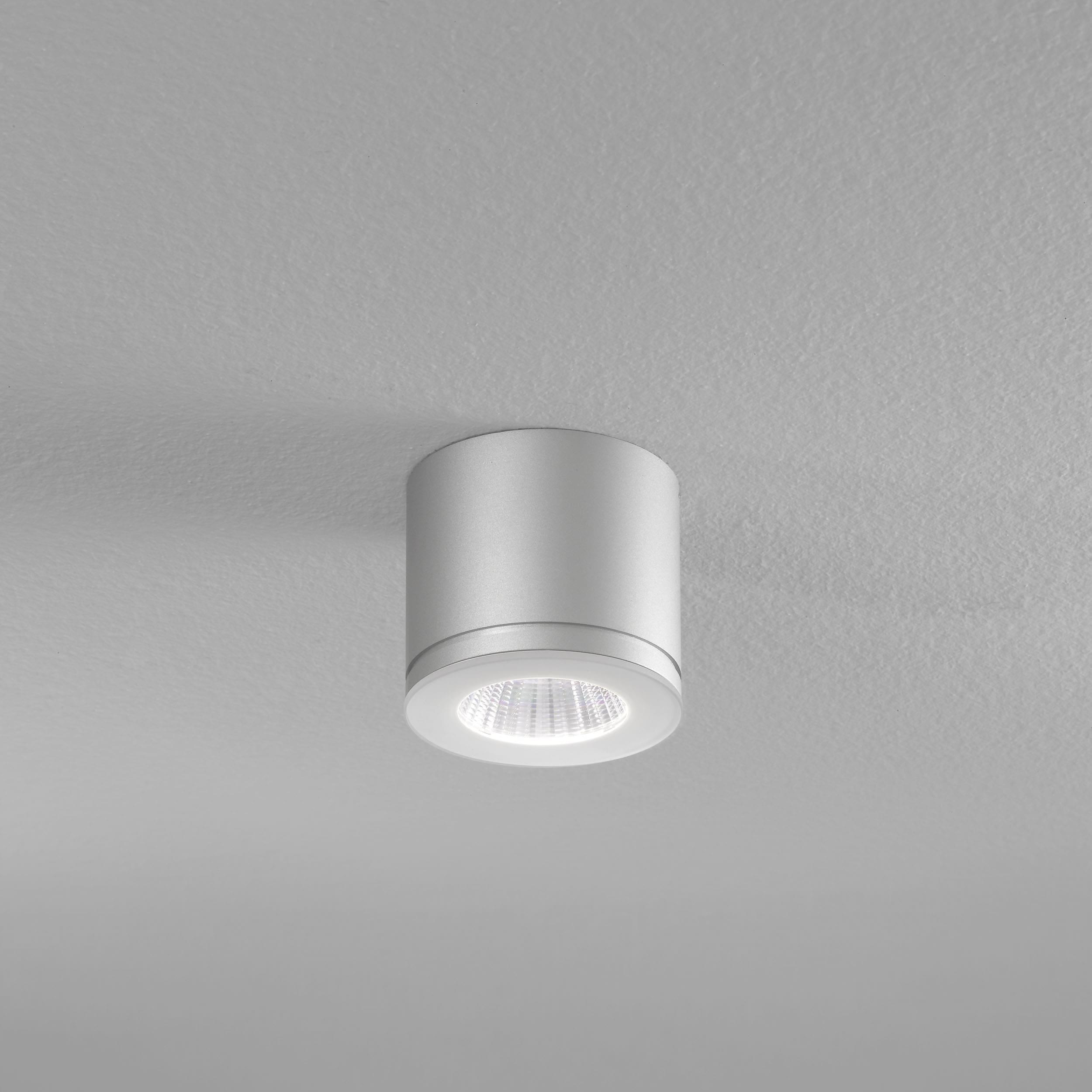 Newton 55 In- und Outdoor LED Deckenstrahler