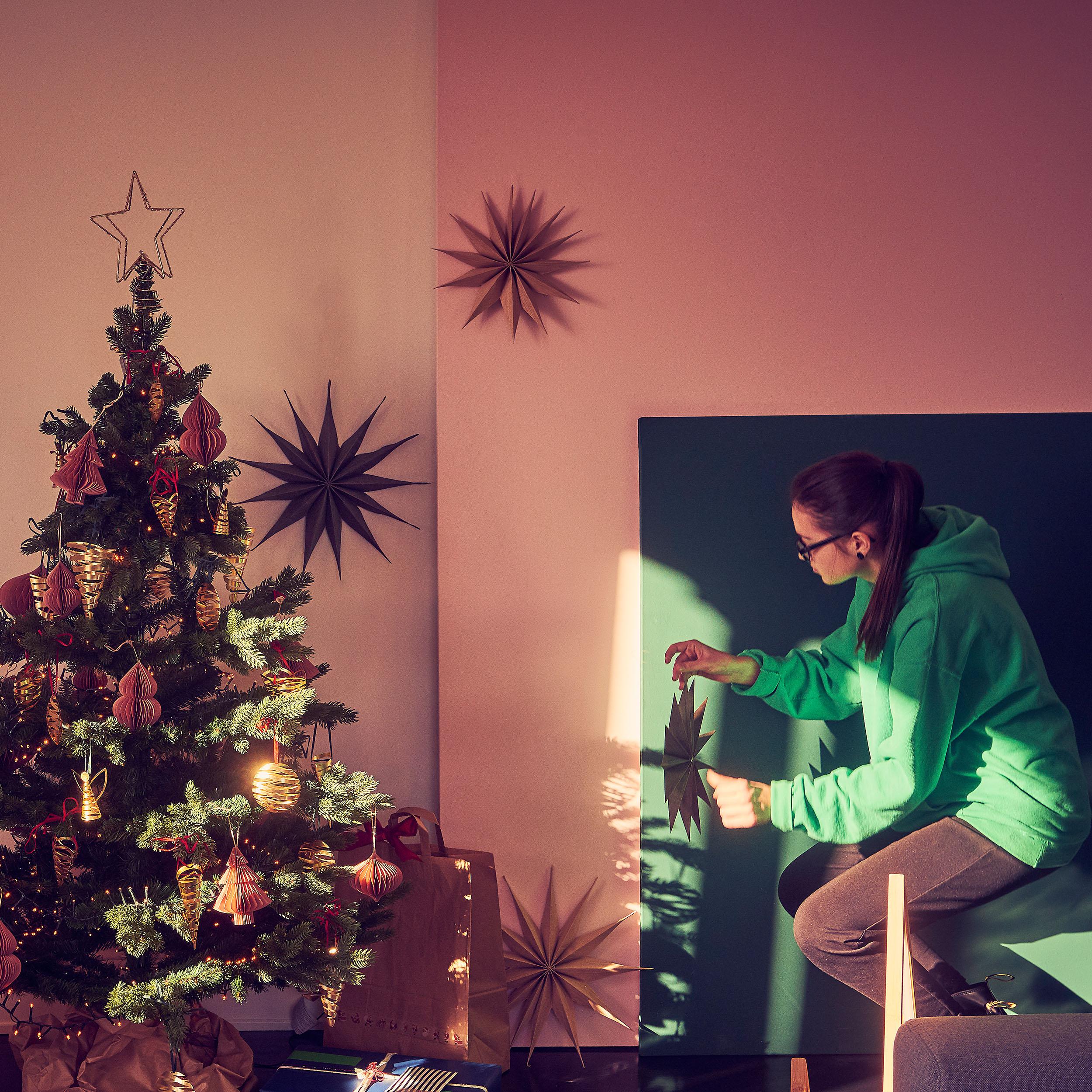 Venok Weihnachtsstern