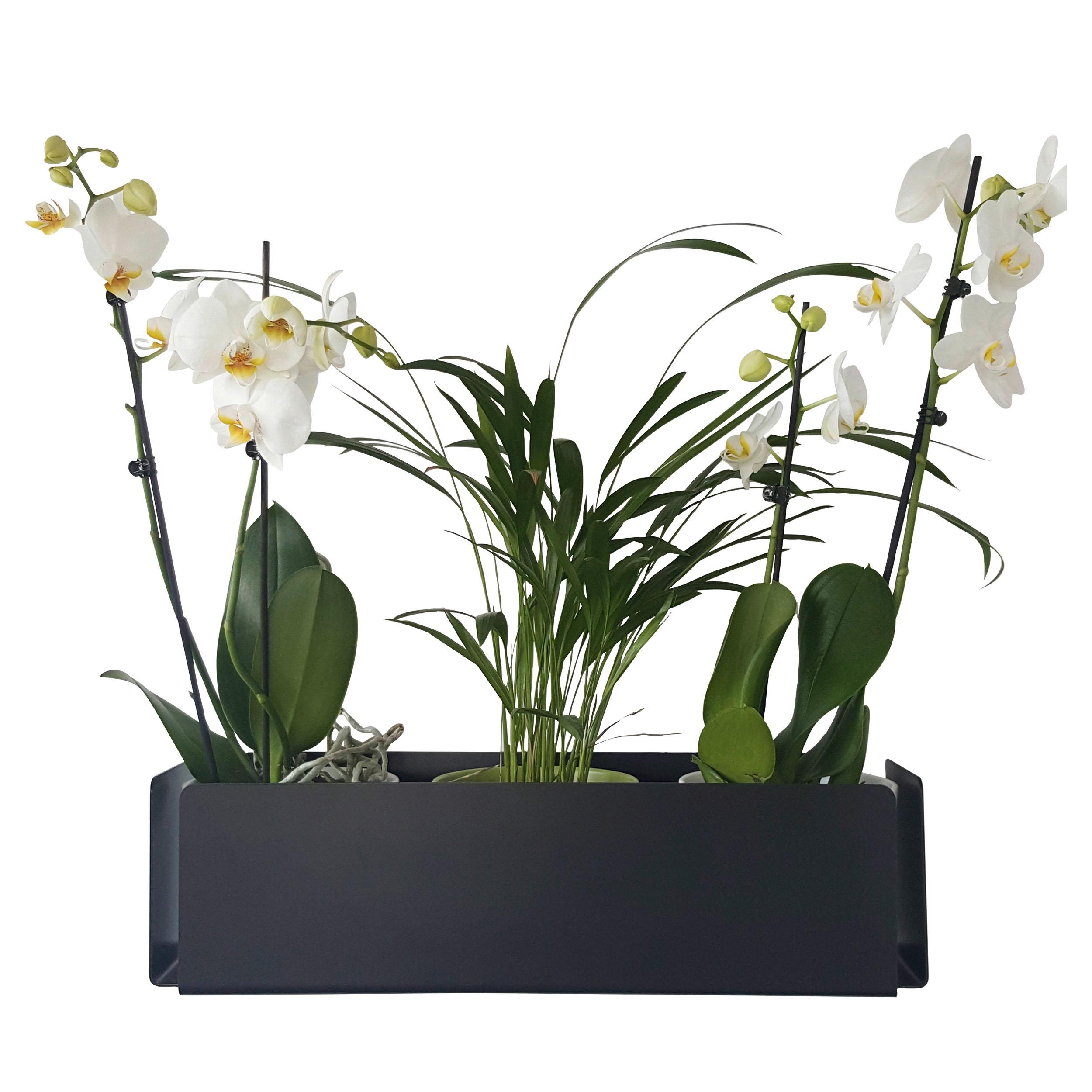 Flatrack Flower Wandregal