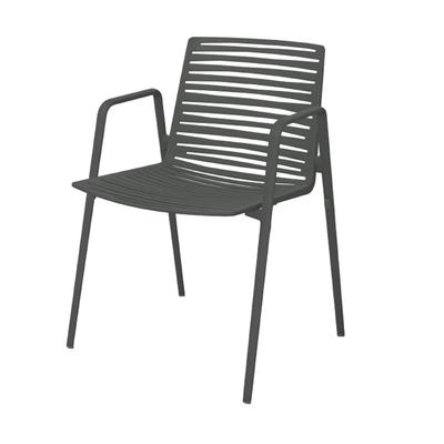 Zebra Armlehnstuhl