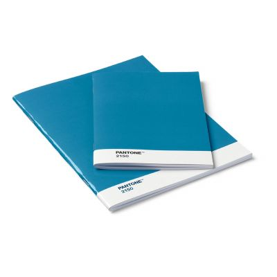 Pantone Booklet Notizbuch 2er-Set