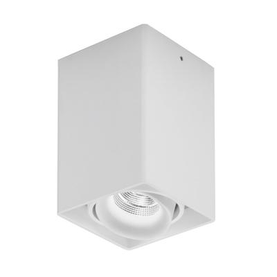Light House LED Deckenstrahler 1-flammig
