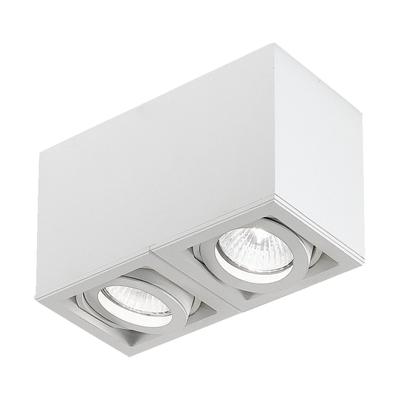 Light Box 2-flammig Deckenstrahler