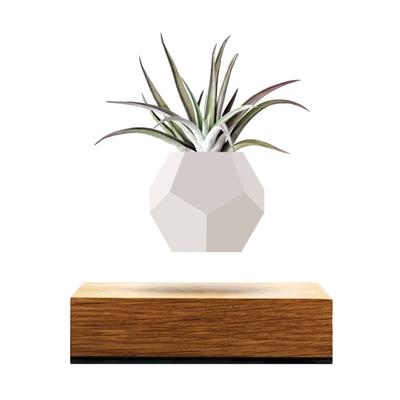 Flyte Lyfe Schwebende Vase