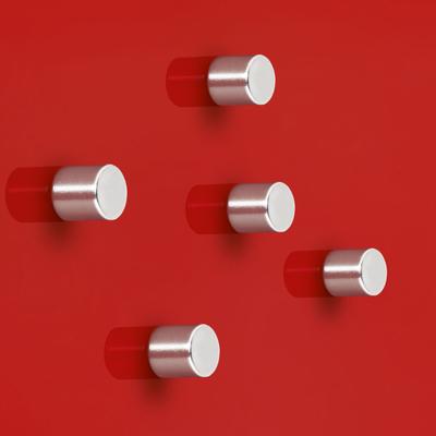 SuperDym Magnet C5 Strong Zylinder im 5er-Set