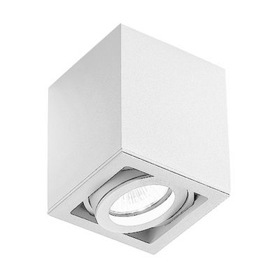 Light Box 1-flammig Deckenstrahler